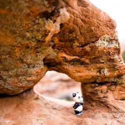 Unser kleiner Panda ist immer dabei und hat sein eigenes Arch gefunden :-)