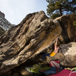 "Karo working hard on her project ""Kill by numbers, V5"""