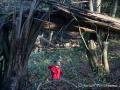 20141101_Tiergarten-Nuernberg2-1